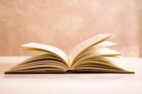 Единые учебники по русскому языку и литературе: не концепция, отсутствие вариативности