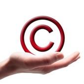 Ozon защищает свои права на сопутствующий товарам контент