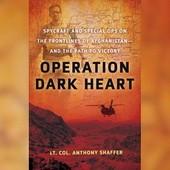 Пентагон сжег 9500 экземпляров книги о войне в Афганистане