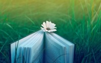 «Буквоед» начал серию книжных фестивалей «Книгатак»