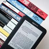 В 20% универсальных издательств США более 10% выручки приходится на е-книги