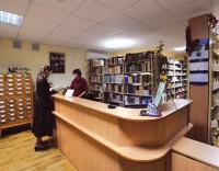 ОНФ призывает восстановить библиотечную сеть Москвы