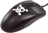 В Госдуме планируют принять альтернативный законопроект по борьбе с пиратами