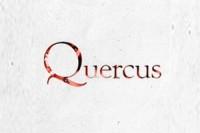 У Quercus появился новый директор